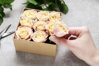 3 Cách Cắm Hoa Đẹp Lung Linh