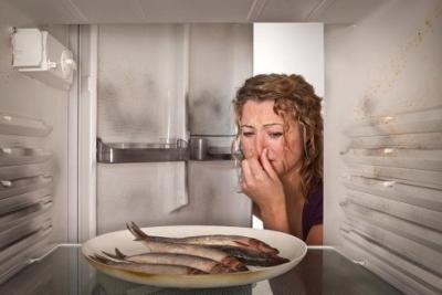Những Cách Khử Mùi Hôi Cho Tủ Lạnh Có Thể Bạn Chưa Biết
